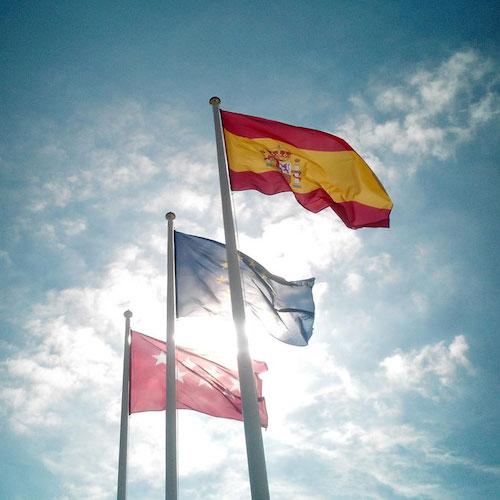 Ejemplos de banderas institucionales