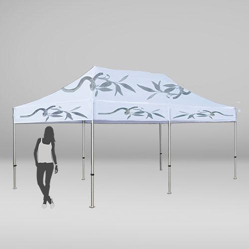 Carpa de 3 por 6 metros con 6 patas y techo para eventos
